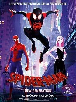 Spider-Man Into the Spider-Verse 2018 FRENCH 720p BluRay x264 AC3-EXTREME