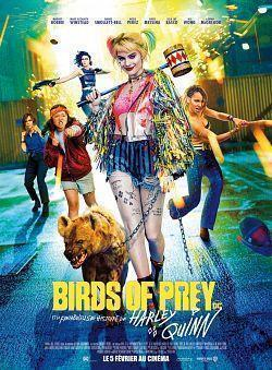 Birds of Prey 2020 FRENCH HDRip XviD-EXTREME