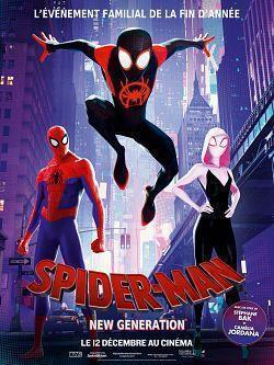 Spider-Man Into the Spider-Verse 2018 TRUEFRENCH BDRip XviD-EXTREME