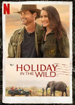 Holiday in the Wild 2019 FRENCH 720p WEB x264-CiELOS