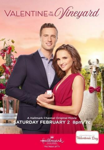 Une idylle de Saint-Valentin FRENCH TVRIP x264 2020