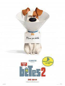 The Secret Life of Pets 2 2019 FRENCH BDRiP XViD-SKRiN