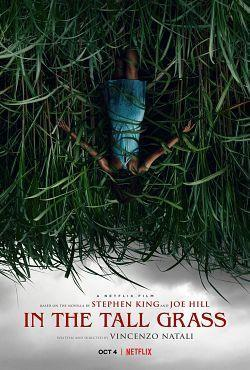 In the Tall Grass 2019 FRENCH 720p WEB H264-EXTREME