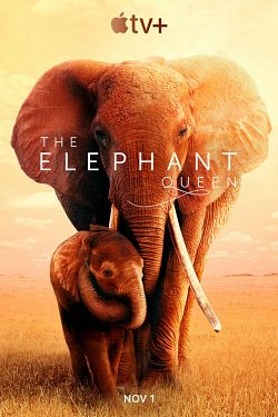 The Elephant Queen 2019 DOC MULTi 1080p WEB H264-NEO