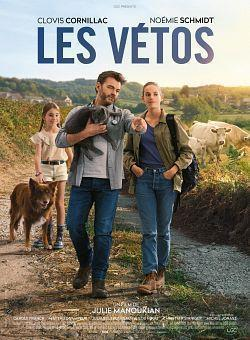 Les Vetos 2019 FRENCH 1080p WEB H264-ALLDAYiN